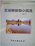 王培静微型小说选